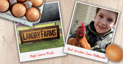 Locally Grown Chicken and Eggs in Syracuse