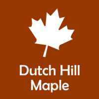 Dutch Hill Maple